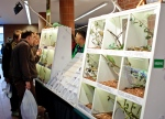 Plants and a comfortable branch makes the expo day nicer for the animals